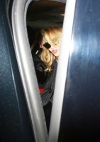 Madonna at the WE after party at the arts club in London (19)