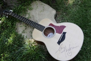 Madonna Autographed Guitar - Bidding For Good (2)