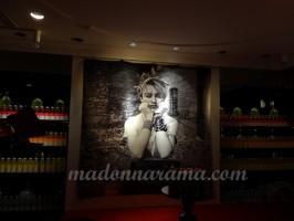 Madonna Transformational Exhibition W Hotel Opera Paris (9)