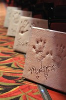 Traverse City's Walk of Fame Madonna handprint