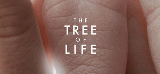 Madonna: «Tree Of Life est un film spirituel et profond»